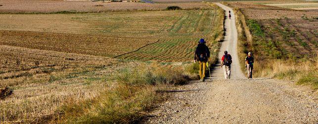 Camino-Santiago-Redecilla-Castilla-Leon-Santo-Domingo-Calzada-Frances_EDIIMA20150706_0521_21
